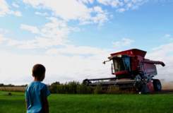 Child in front of harvester